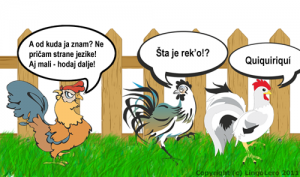 rooster_talk_500